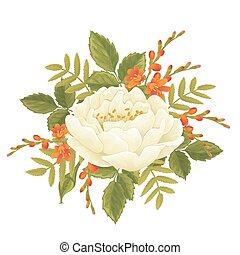 White rose graphic flowers - English white rose and...