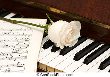 White rose over music sheets and piano keys
