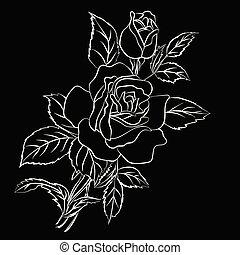 White Rose sketch on black background