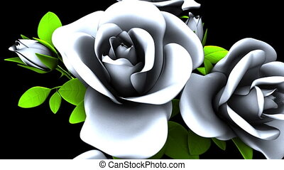 White Roses Bouquet on Black Background. Loop able 3DCG...