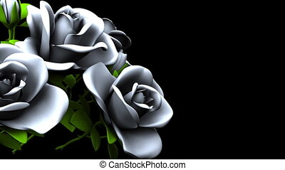 White Roses  Bouquet on Black Text Space