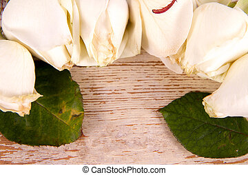 White roses on a wooden background