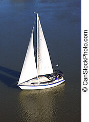 White sailboat. - A white sailboat cruising on the...