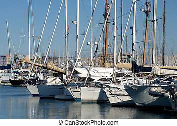 White Sailboats in the harbor