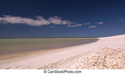 White sand beach and shells - A wide shot of a white sand...