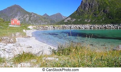 white sand beach at summer