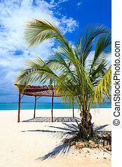 White sand beach in the tropics