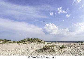 White sand beach landscape on a sunny summer day on Sylt island