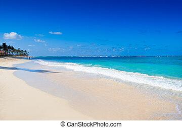 White sand beach near blue ocean