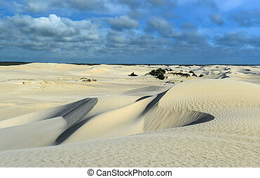 White sand dunes of Nilgen Nature Reserve. Located near ...