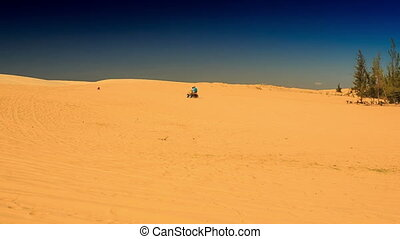 White Sand Dunes with Rare Plants and Distant Quad - MUI NE,...
