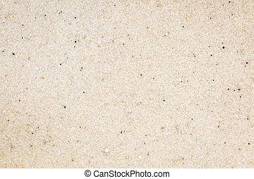 life size macro of white sand grain from Clearwater Beach, Pineallas County, Florida