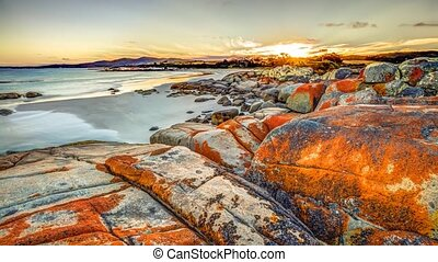 Bay of Fires - White sandy beach and orange lichen in The...