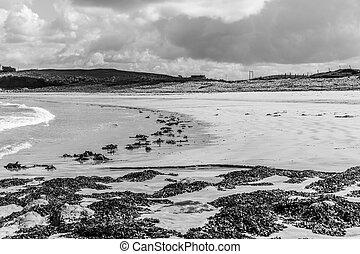 White sandy beach in monochrome