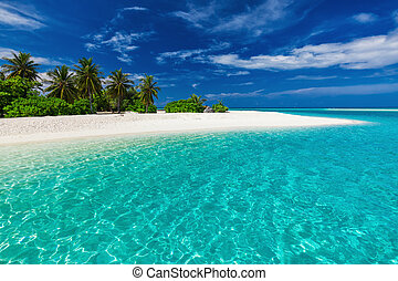 White sandy tropical beach with palm trees and blue lagoon