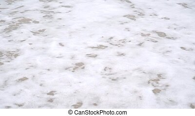White sea foam on wet sand of the beach. Slow motion video
