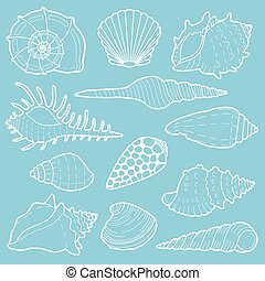 White sea shells vector icon set
