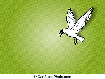 seagull - white seagull on the green background