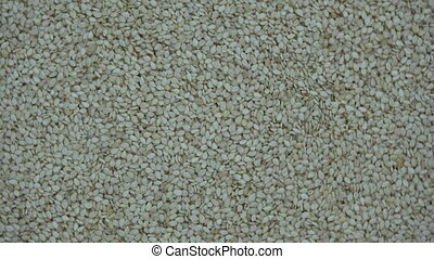 White sesame seeds rotating background - White sesame seeds...