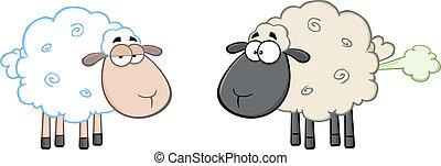 White Sheep And Farting Black Sheep