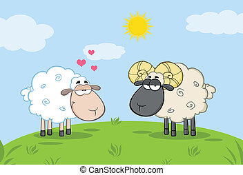 White Sheep In Love With Ram Sheep