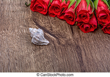 White shell and roses on wooden background