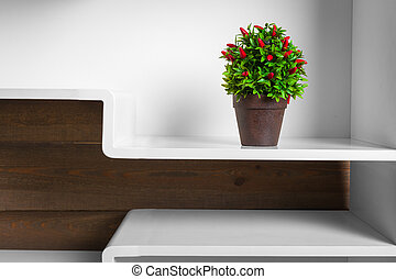 white shelves and green plant in pot