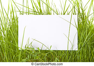 White Sign Amongst Grass