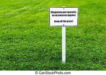 White sign board on green grass