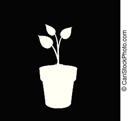 White silhouette of growing plant in the pot