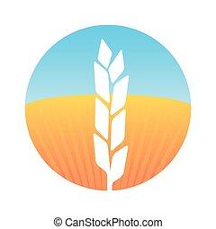 White Silhouette Wheat on Farm Field