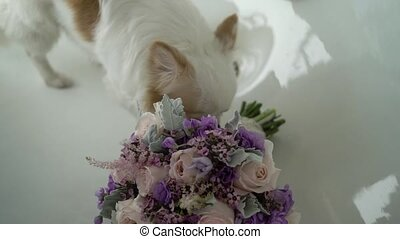 White small dog with bouquet