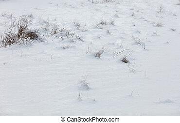 white snow background