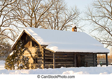 white snow covered roof