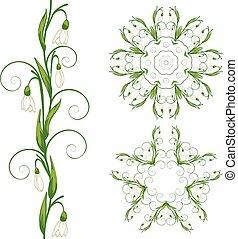 White Snowdrop Flowers