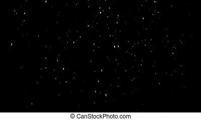 white snowflakes falling on a black background