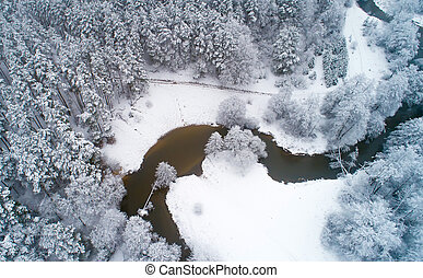 White snowy trees aerial view