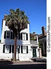 White Southern Mansion