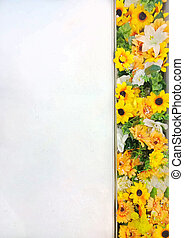 White space with Sunflower background - White space with ...