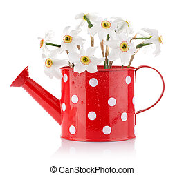 white spring flowers in red vase