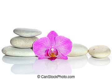 White stones and a flower of a pink orchid on a white background