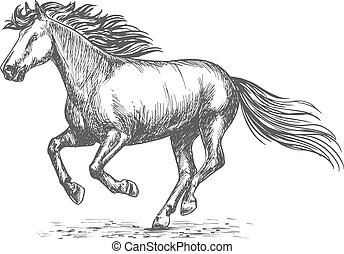White strong horse galloping on sport races - Portrait of...