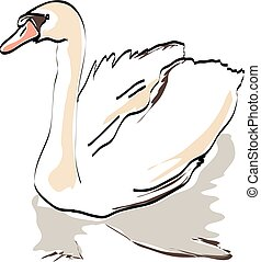white swan on a white background