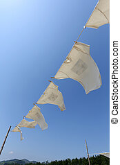 t-shirts hanging on the clothesline - White t-shirts hanging...