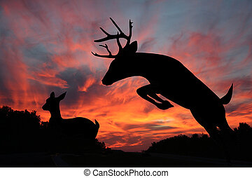 White tail deer buck and doe make striking silhouettes against a beautiful sunset in the background.