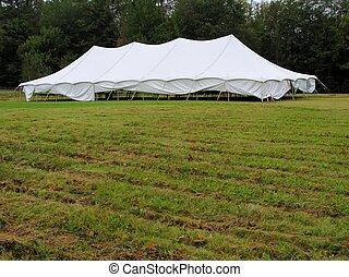 white tent