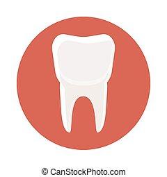 White tooth icon, cartoon style