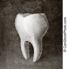tooth - white tooth isolated on a black  background