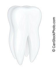 white Tooth isolated on a white bacground
