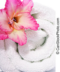 White Towel and Pink Gladiola